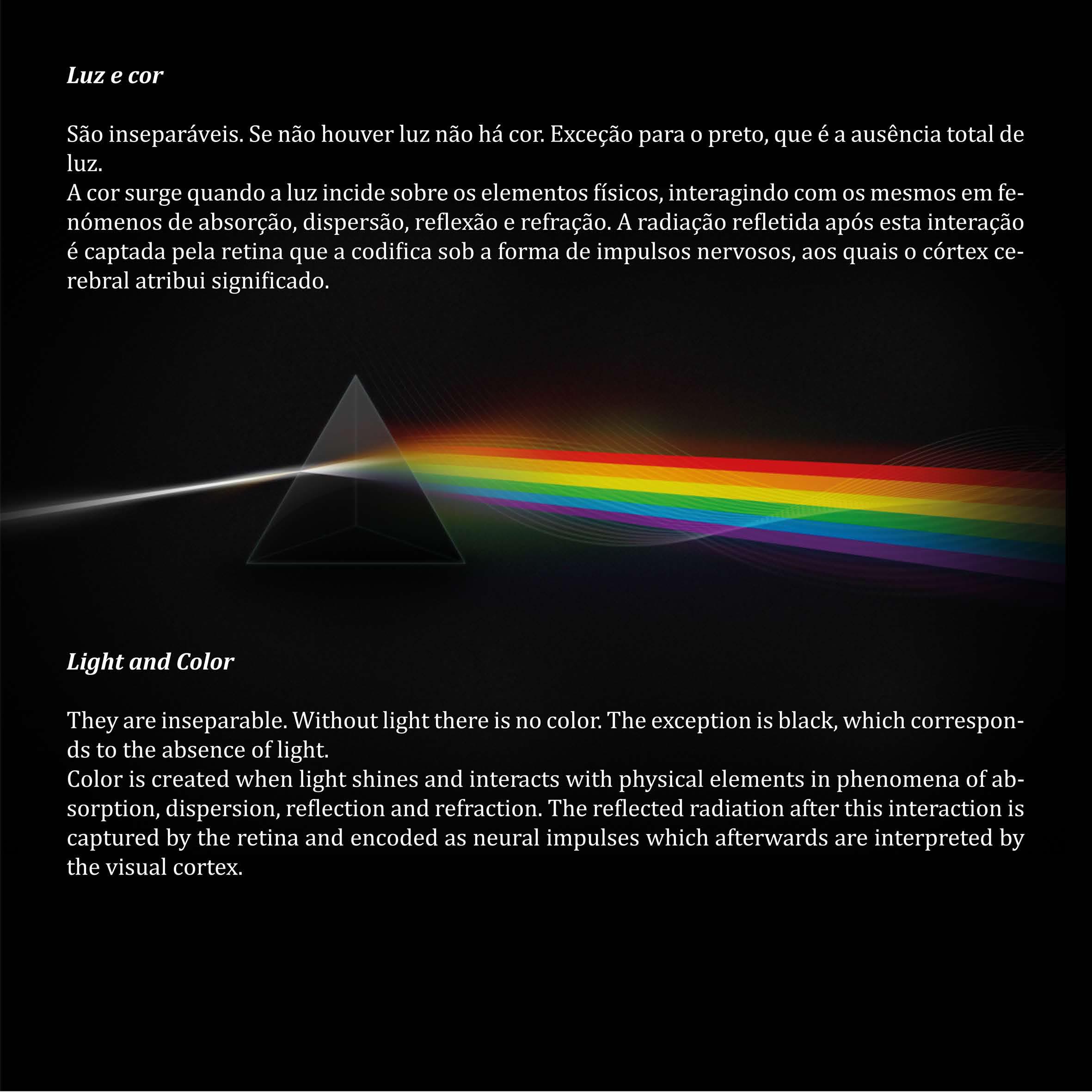 luz e visão exposição visões